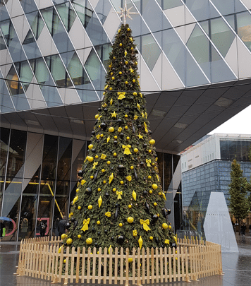 Christmas Trees & Deco